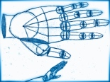 Hand_Anatomy
